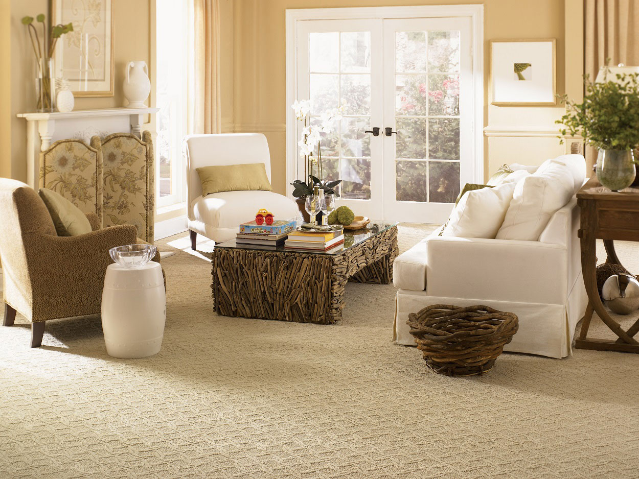 berber carpet in the living room - Carpet Living Room