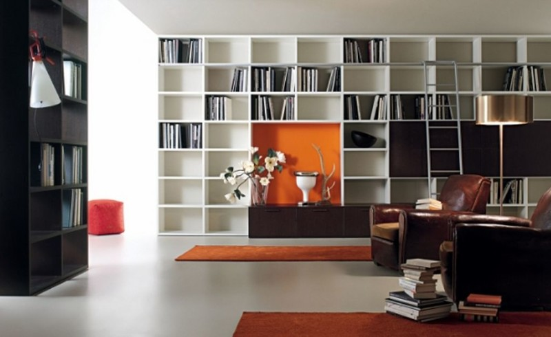 antique-neo-clasical-library-room-with-minimalist-cabinet