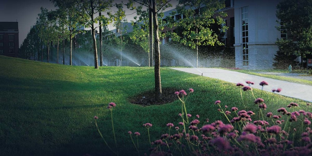 lawn-systems-background