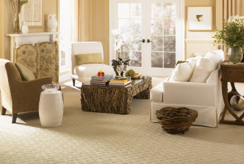 Carpet sell / Install